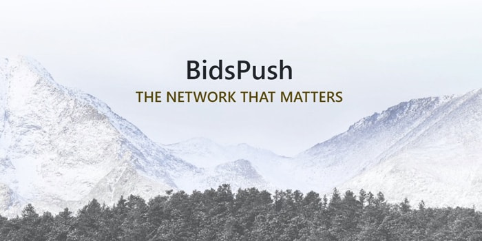BidsPush ad network review